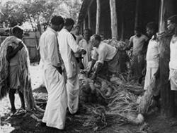 European and Indian employees in the jute industry, c1950
