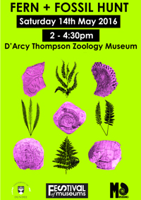poster for Festival of Museums Fern & Fossil Hunt event
