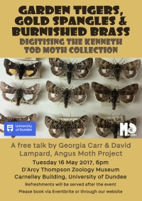 poster for moth talk