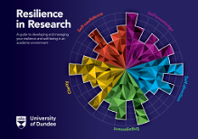 Resilience in Research