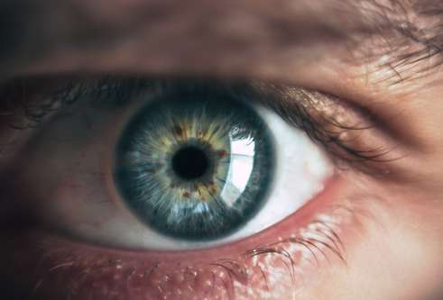 Thumbnail for story: The eyes have it: Funding boost for software that detects life-threatening conditions